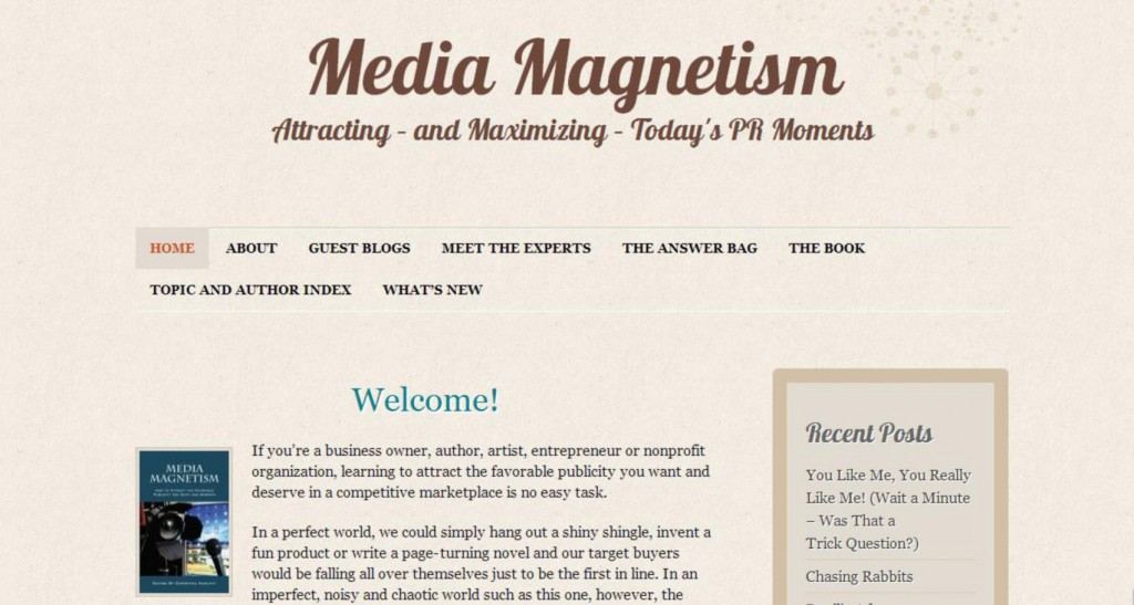 how to get media interviews, media magnetism: how to attract the favorable publicity your want and deserve