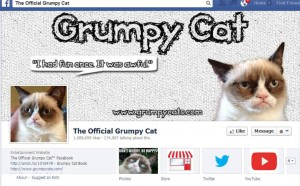 social media today, grumpy cat facebook, social media, facebook